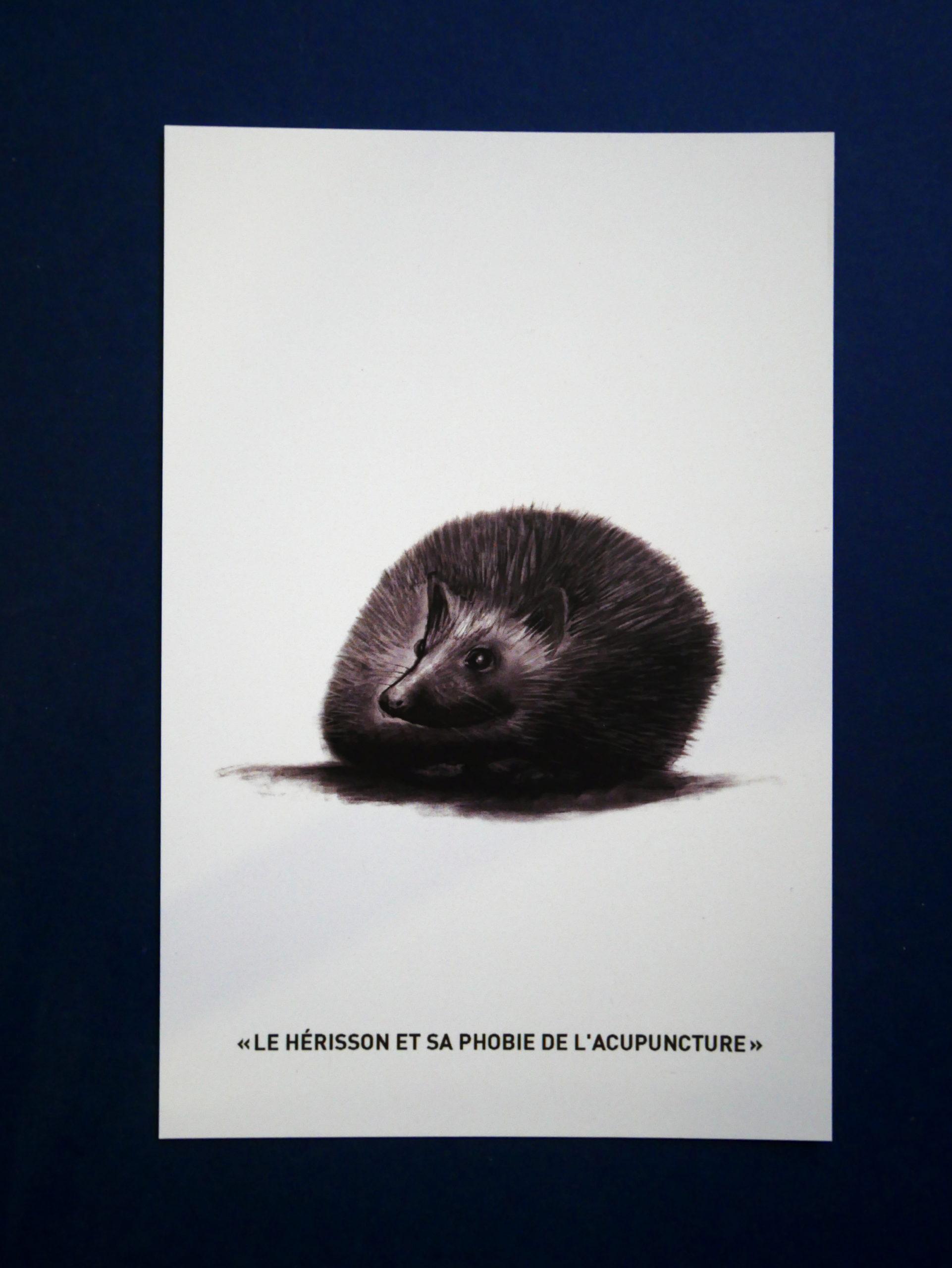 "Carte postale ""hérisson"""